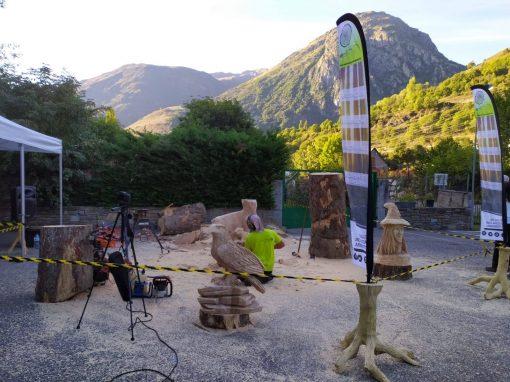 Exhibición de talla con motosierra en Tredós (Valle de Arán)